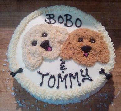 Three Dog Bakery Vancouver Birthday Cakes Personalized